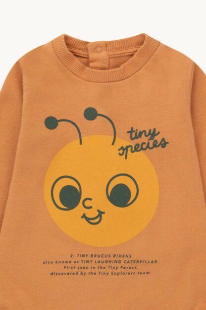 TINYCOTTONS - TINY SPECIES BODY