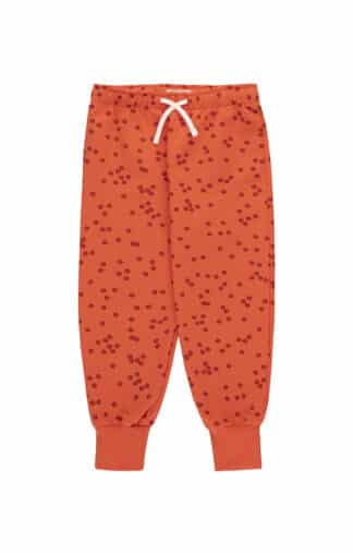 TINYCOTTONS - DAISIES SWEATPANT