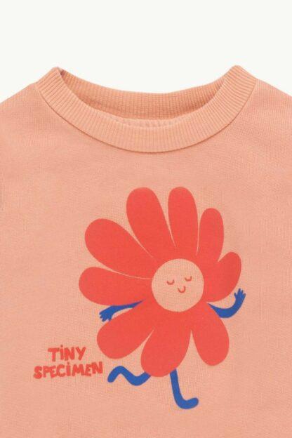 TINYCOTTONS - TINY SPECIMEN BABY SWEATSHIRT